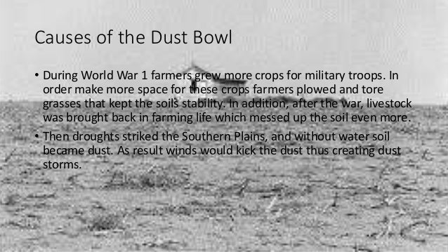 main causes of the dust bowl