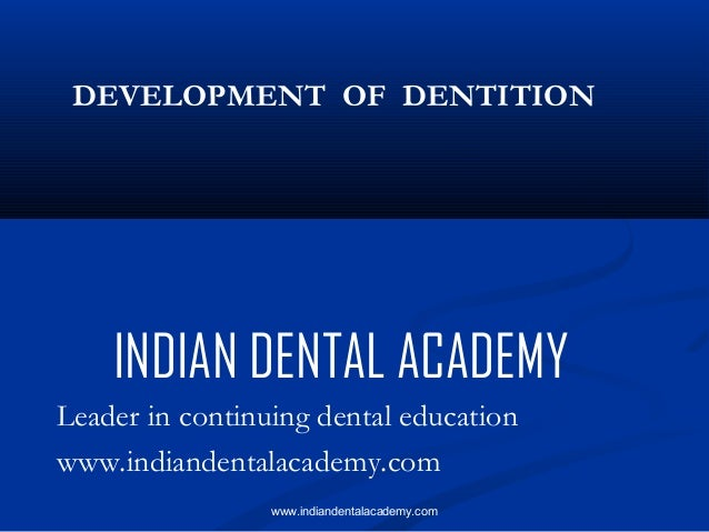 Development of dentition. /certified fixed orthodontic courses by Indian dental academy