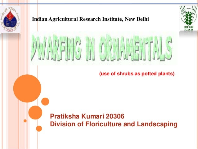 Indian Agricultural Research Institute, New Delhi                            (use of shrubs as potted plants)       Pratik...