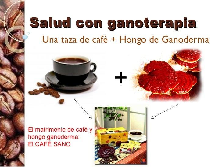 Salud con ganoterapia     Una taza de café + Hongo de Ganoderma                          +El matrimonio de café yhongo gan...