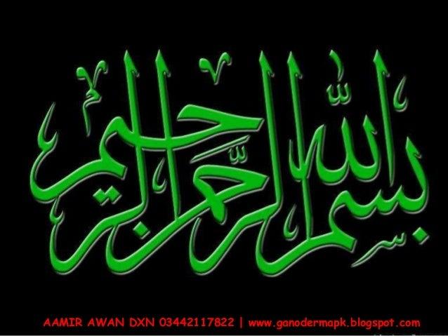 AAMIR AWAN DXN 03442117822 | www.ganodermapk.blogspot.com