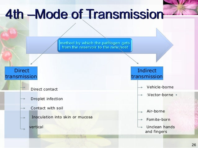What is a vector transmission