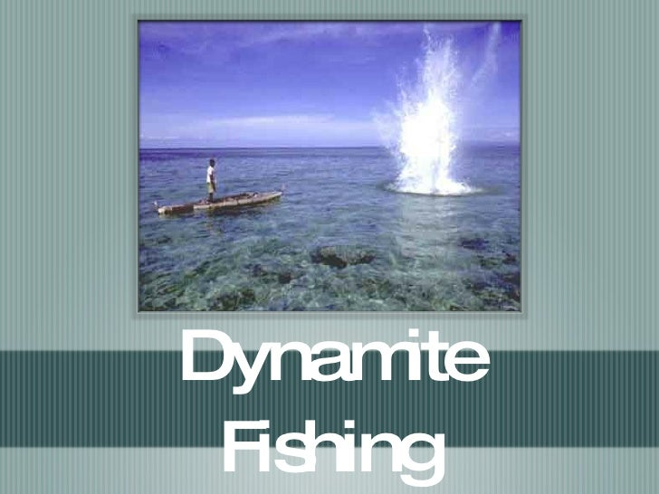 dynamite fishing Full list of dynamite fishing - world games achievements and guides to unlock them the game has 36 achievements worth 1000 gamerscore.