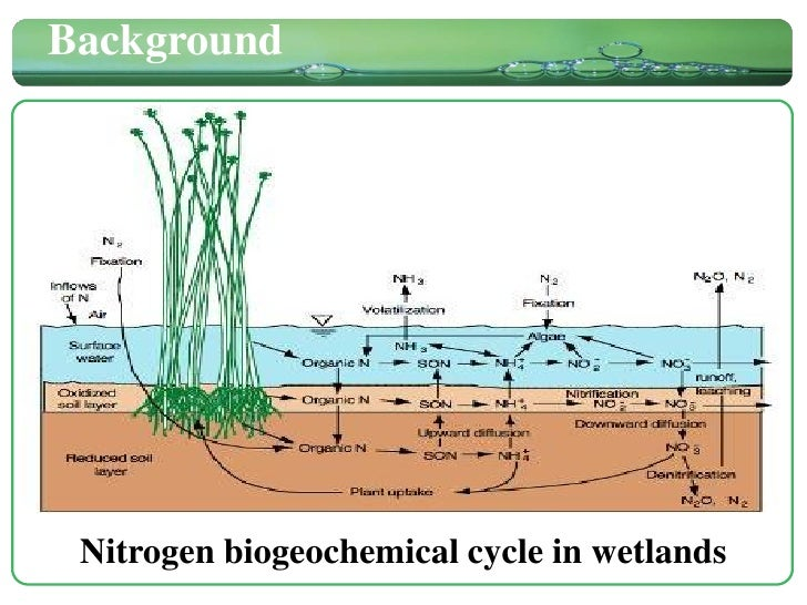 Nitrogen Removal in Integrated Constructed Wetland Treating Domestic ...