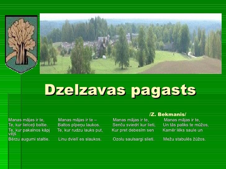 Dzelzavas pagasts