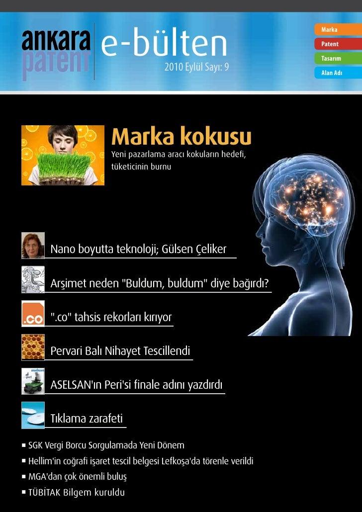 e-bülten                                                                          Marka                                   ...