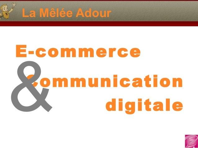 La Mêlée Adour E-commerce Communication digitale&