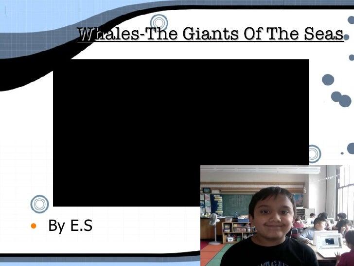 Whales-The Giants Of The Seas   <ul><li>By E.S </li></ul>