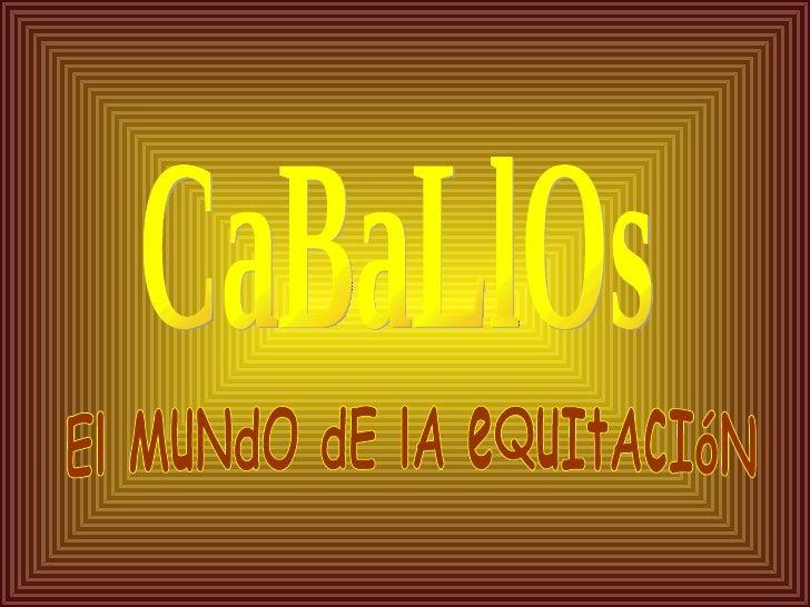 CaBaLlOs El MuNdO dE lA eQuItAcIóN
