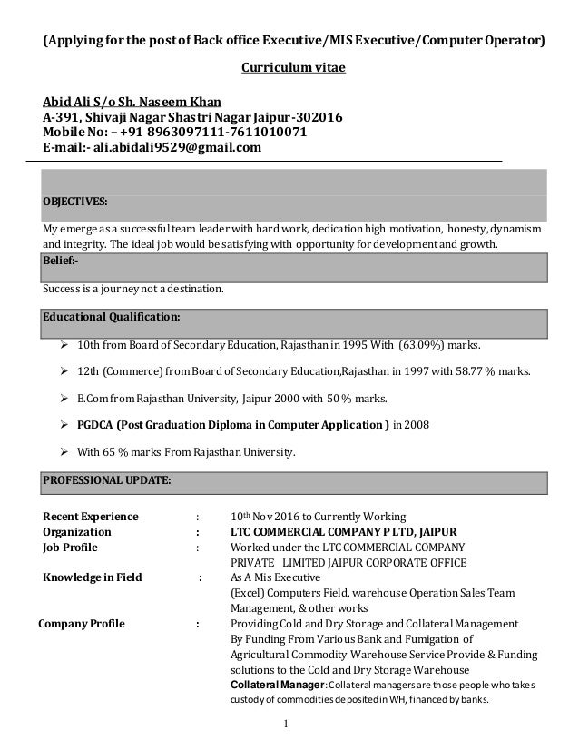 back office executive resume sample