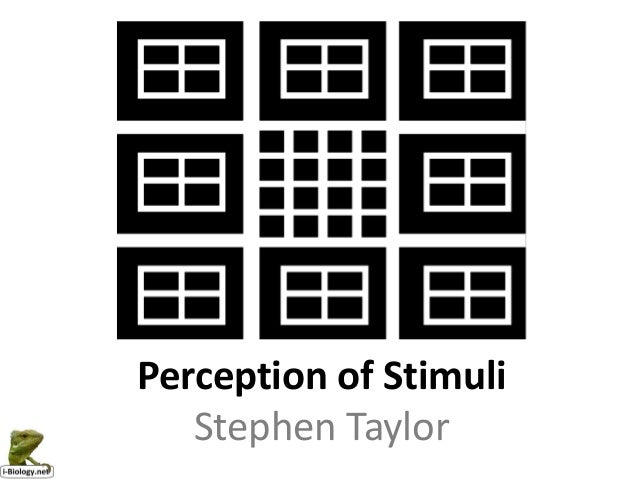 Perception of Stimuli   Stephen Taylor