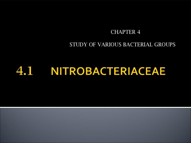 CHAPTER 4STUDY OF VARIOUS BACTERIAL GROUPS