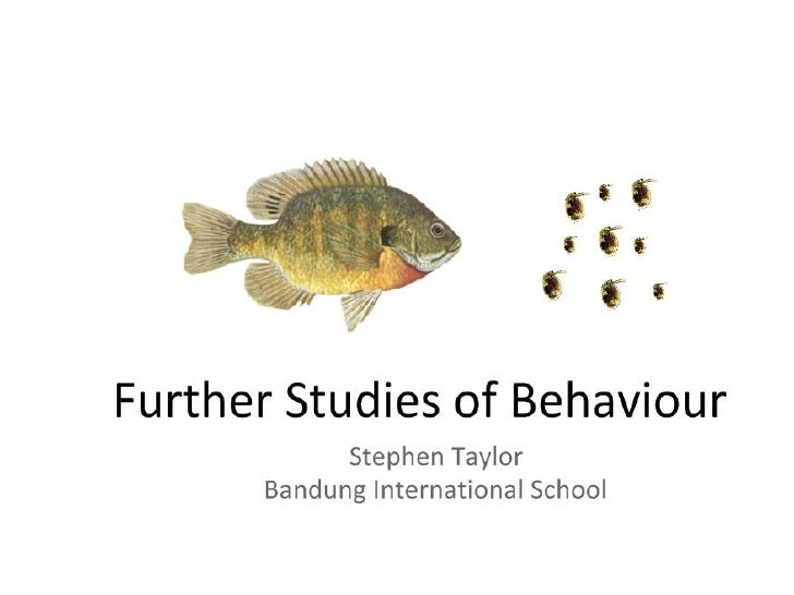 E6 Further Studies Of Behaviour (HL)
