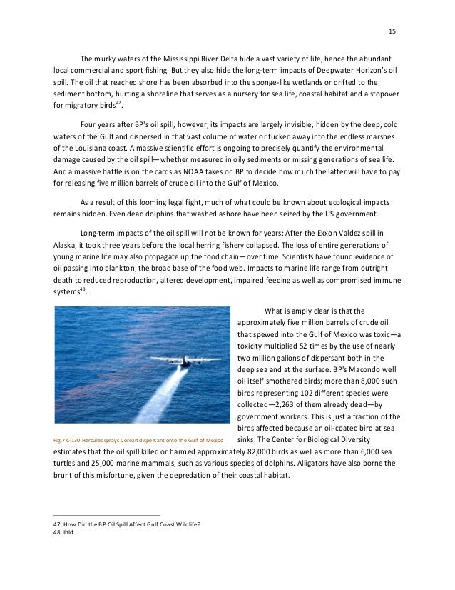 bp oil spill research paper Executive summary this report discusses the issue of concern because an oil spill is the bp oil spill in the in the case discussed in this paper, the bp.