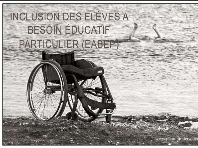 INCLUSION DES ELÈVES A  BESOIN ÉDUCATIF  PARTICULIER (EABEP)