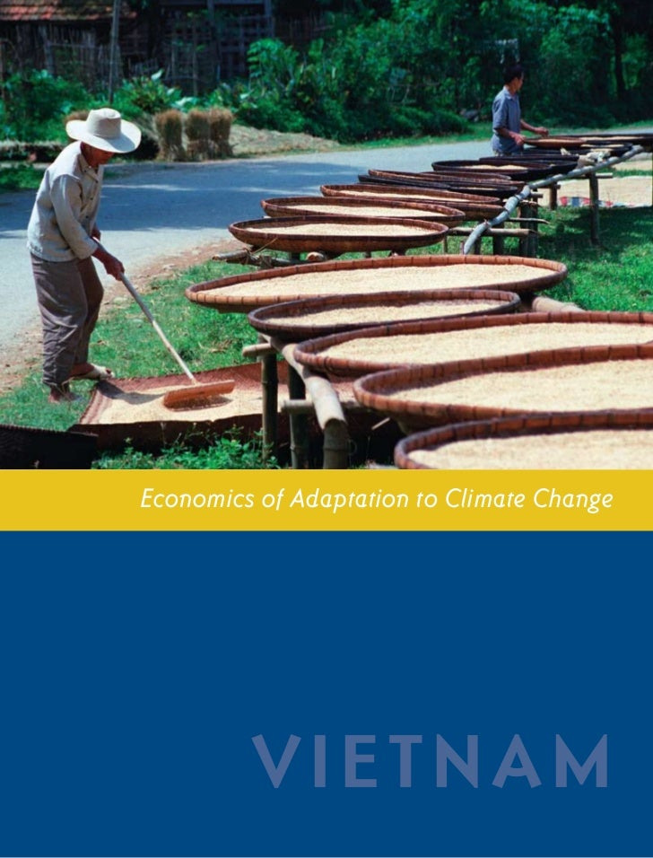 V I E T N A M CO U N T RY ST U DY              i             Economics of Adaptation to Climate Change                    ...