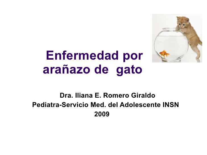 Enfermedad por arañazo de  gato  Dra. Iliana E. Romero Giraldo Pediatra-Servicio Med. del Adolescente INSN  2009