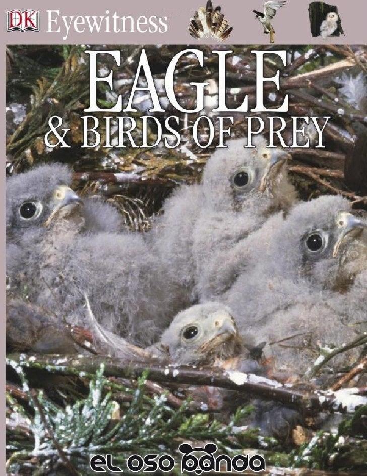Eyewitness  Eagle &Birds of Prey