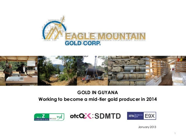 GOLD IN GUYANAWorking to become a mid-tier gold producer in 2014                                          January 2013    ...