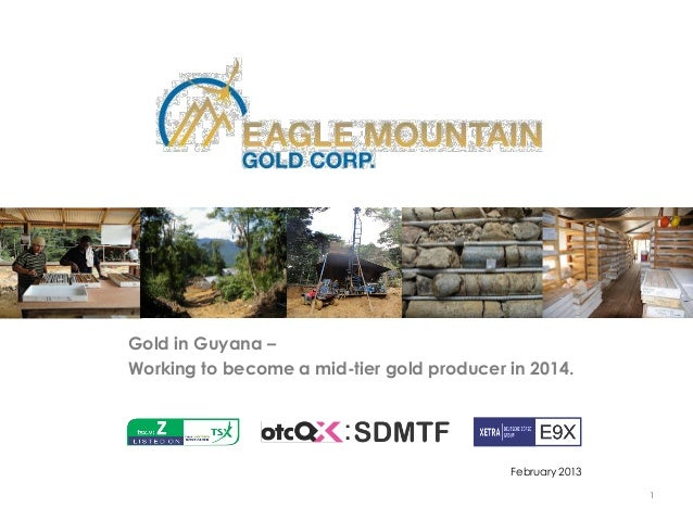 Gold in Guyana –Working to become a mid-tier gold producer in 2014.                                           February 201...