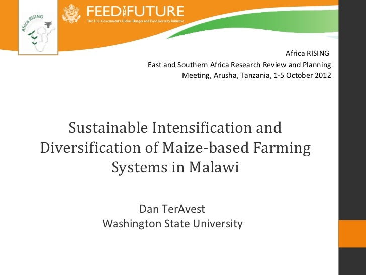 Sustainable intensification and diversification of maize-based farming systems in Malawi