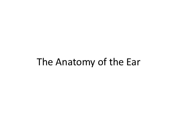 The Anatomy of the Ear