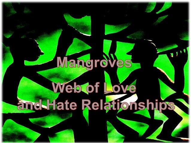 Mangrove conservation forum