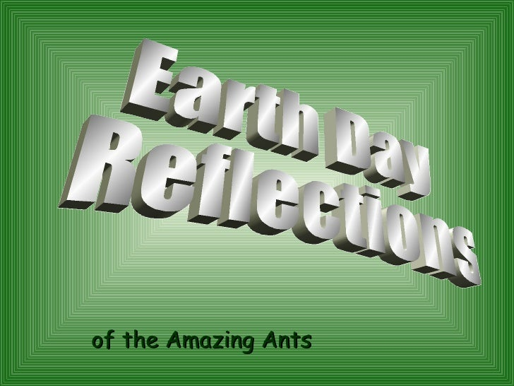 Earth day reflection by the Amazing Ants