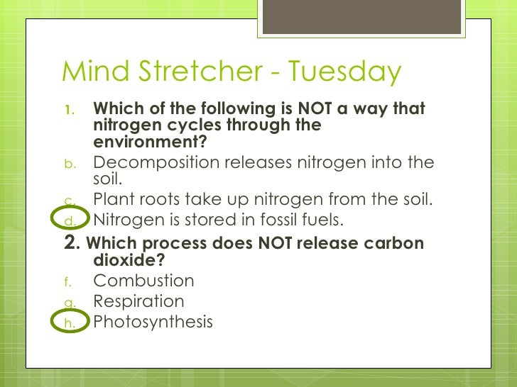 Mind Stretcher - Tuesday <ul><li>Which of the following is NOT a way that nitrogen cycles through the environment?  </li><...