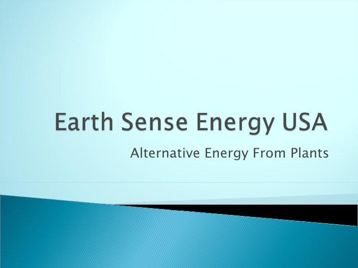 Alternative Energy From Plants