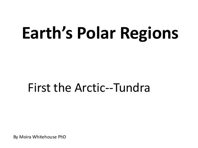 Earth's Polar Regions      First the Arctic--TundraBy Moira Whitehouse PhD