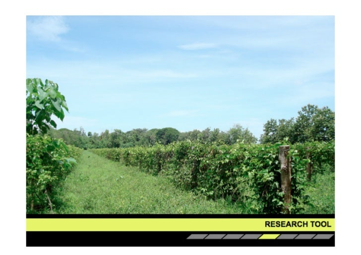 School of Agriculture:Students tend to work inside away from their research environment.