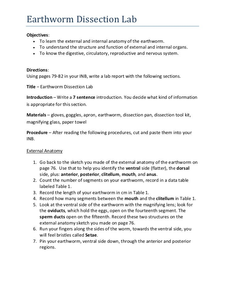 Earthworm Dissection Lab Report on Arthropod Worksheet