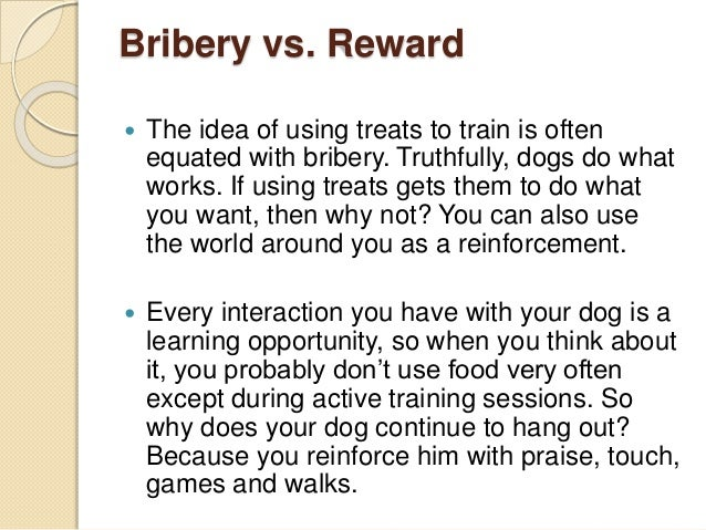 10 Easy Dog Training Tips