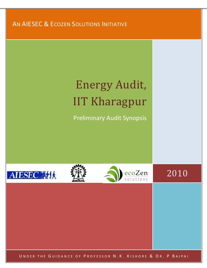 Energy Audit Synopsis