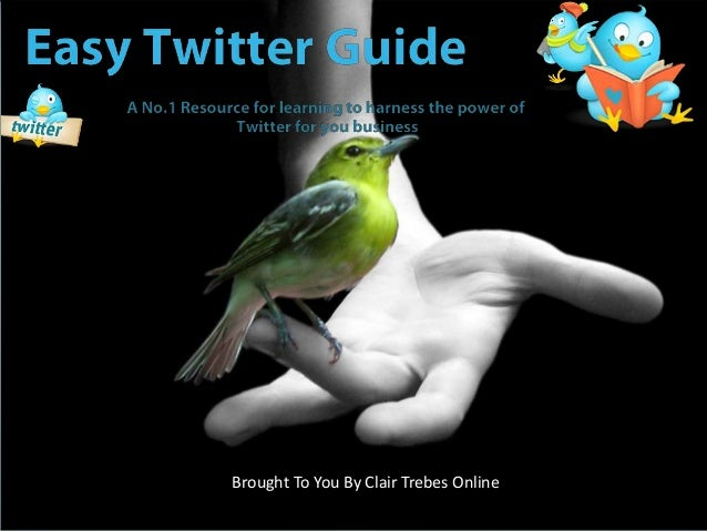 Easy Twitter Guide Overview
