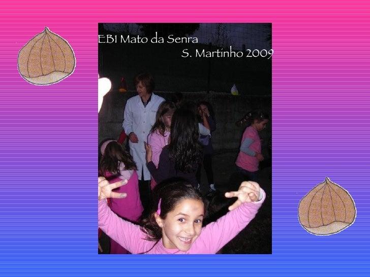 EB1 Mato da Senra  S. Martinho 2009