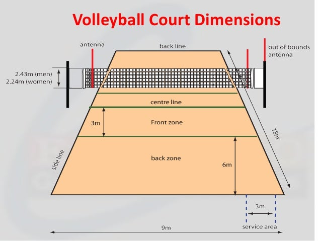 Beautiful indoor volleyball court dimensions gallery for Indoor basketball court size