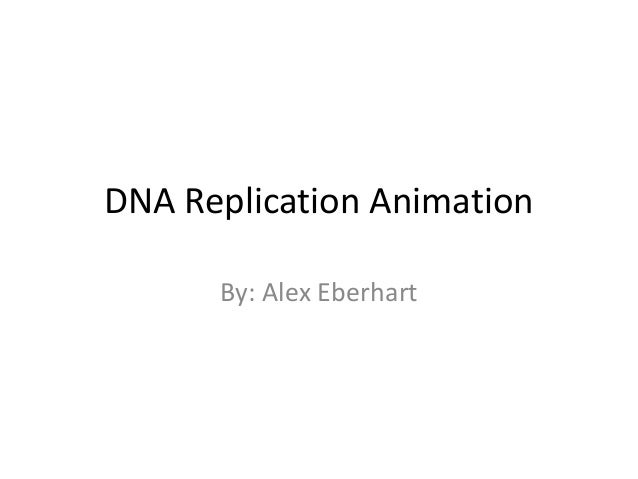 DNA Replication Animation By: Alex Eberhart