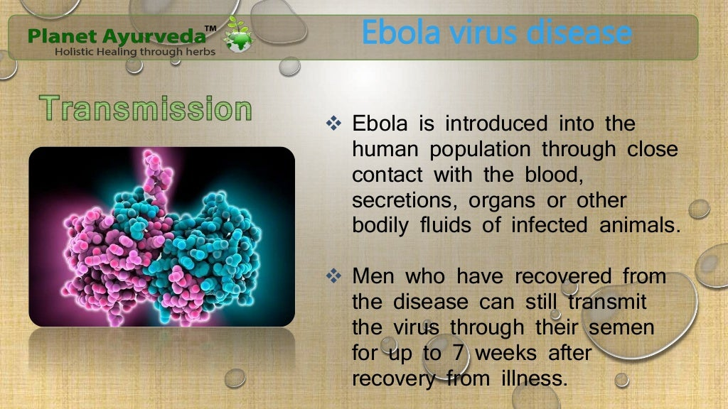 the symptoms diagnosis and therapy for ebola virus Ebola virus disease evd : causing agent, clinical symptoms, diagnosis, treatment & prevention introduction ebola virus disease evd is caused by ebolaviruses {bundibugyo virus (bdbv), ebola virus (ebov), sudan virus (sudv), and taï forest virus (tafv)} and characterised by viral hemorrhagic fever (ebola hemorrhagic fever) .