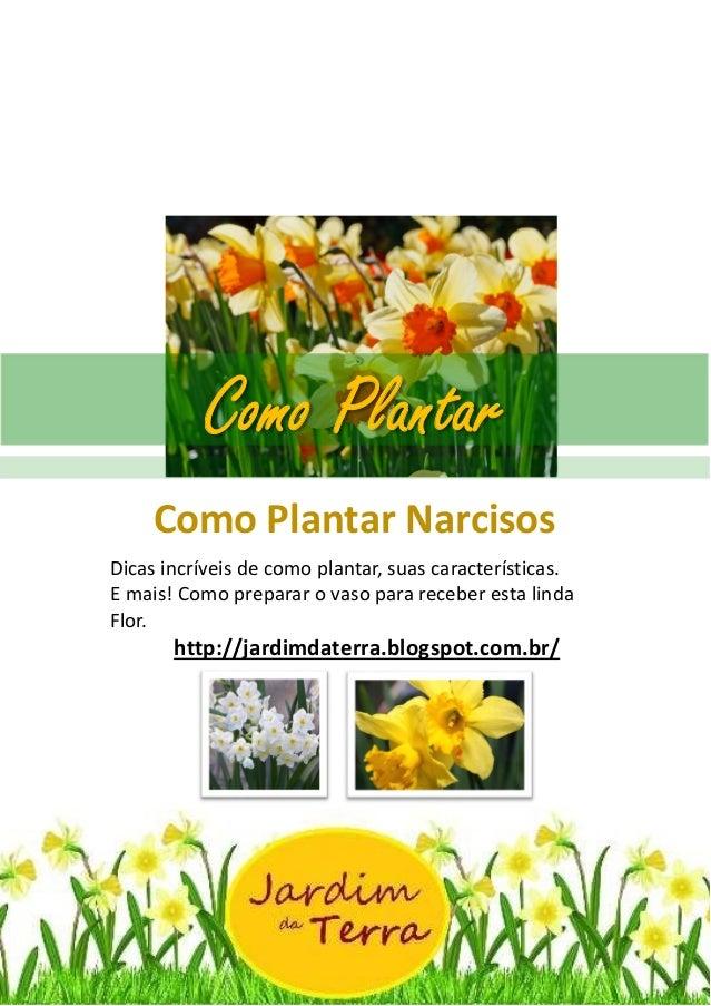 Como Plantar Narcisos http://jardimdaterra.blogspot.com.br/ Como Plantar Narcisos Dicas incríveis de como plantar, suas ca...