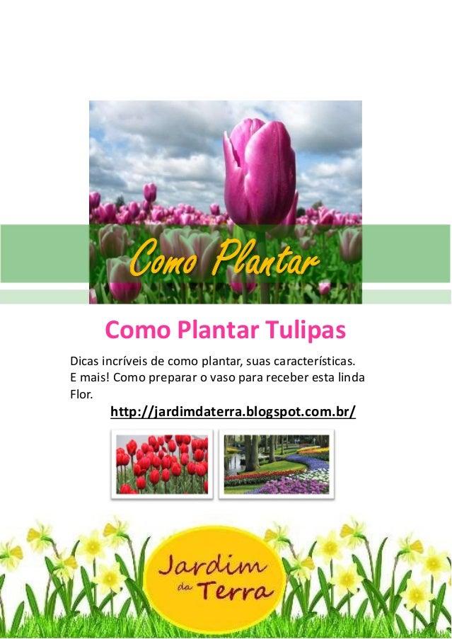 Como Plantar Tulipas http://jardimdaterra.blogspot.com.br/ Como Plantar Tulipas Dicas incríveis de como plantar, suas cara...