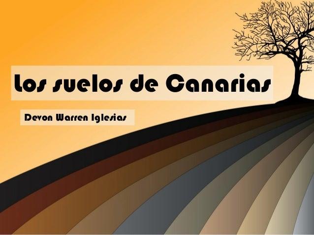 Los suelos de Canarias Devon Warren Iglesias