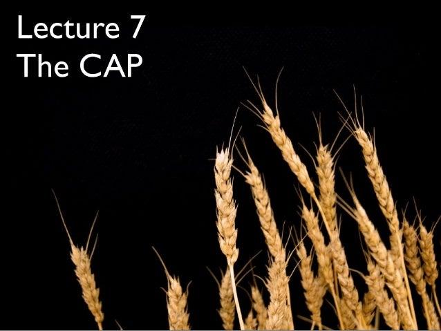 Ec4333 2007 Lecture7 The CAP