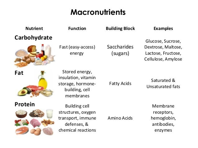 macronutrients nutrition and carbohydrates Nutrition guy gourmet how much fat, protein, and carbs should you be eating what should his macronutrient breakdown really be.