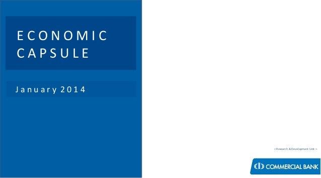 Economic Capsule - January 2014