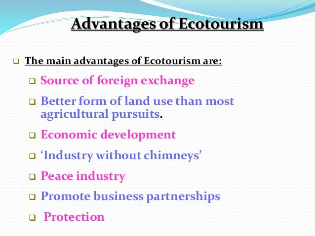 future of ecotourism essays