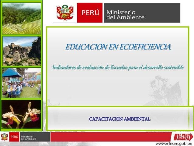 EDUCACION EN ECOEFICIENCIA Indicadores de evaluación de Escuelas para el desarrollo sostenible CAPACITACIÓN AMBIENTAL