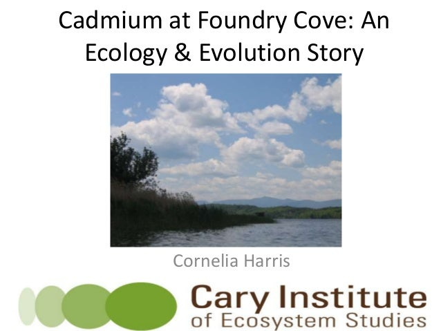 Cadmium at Foundry Cove: An Ecology & Evolution Story Cornelia Harris