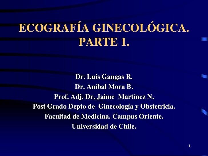 Ecogineco 1